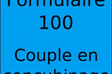 Couple pacsé avec 1 déclaration