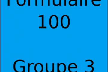 Déclaration d'impôt Formulaire 100 Groupe de 3