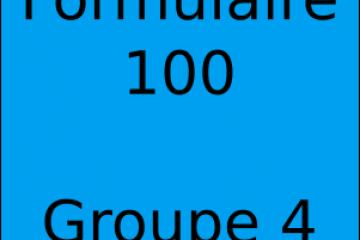 Déclaration d'impôt Formulaire 100 Groupe de 4
